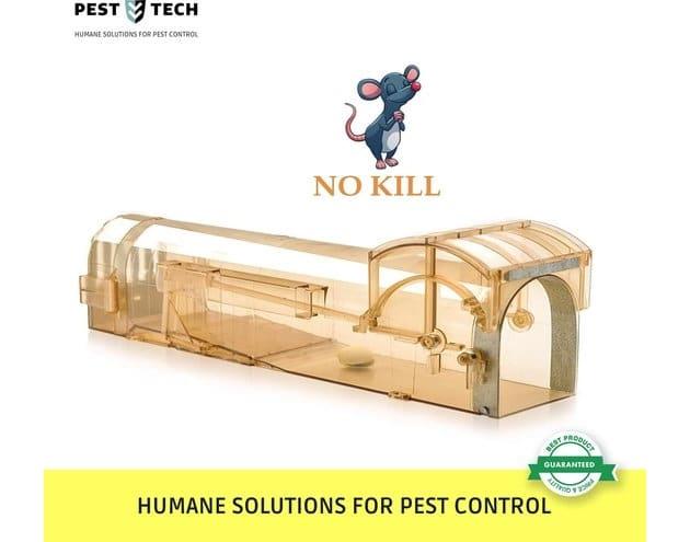pest-tech-premium-diervriendelijke-en-humane-muizenval